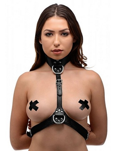 Imbracatura femminile Chest - STRICT